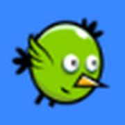 Kuku Bird