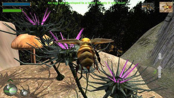 蜜蜂生存模拟器图2