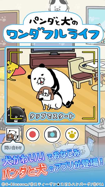 熊猫与狗狗的美好人生图1