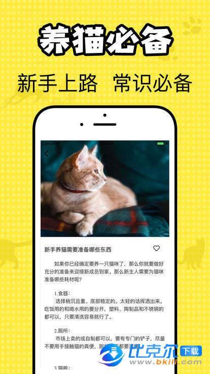 猫咪翻译官图3