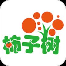 柿子树早期教育