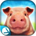 小猪模拟器2