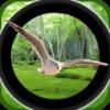 森林鳥狩獵