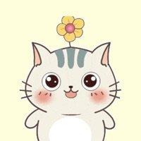 头顶花的猫