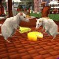 流浪鼠家庭模拟器