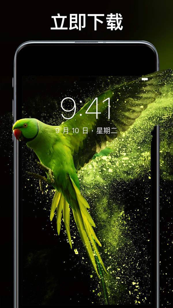 主题刘海壁纸手机软件图1