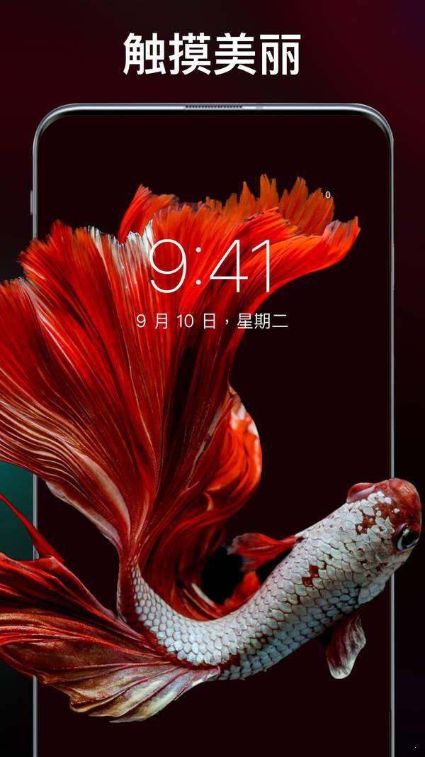 主题刘海壁纸手机软件图3