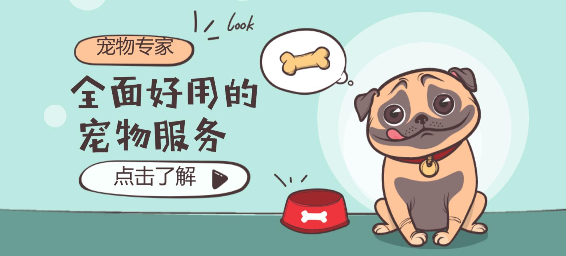 全面好用的寵物服務app