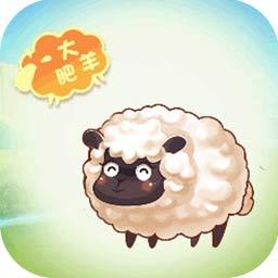 天天来放羊