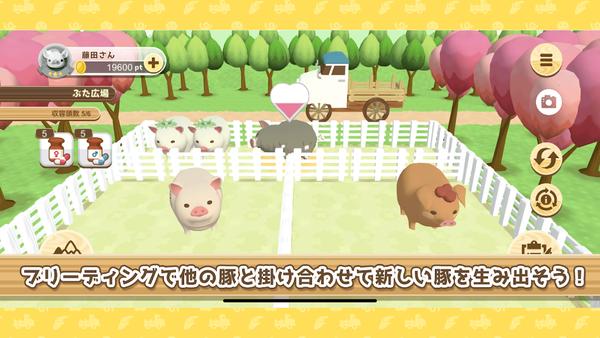 養豬場3D圖5