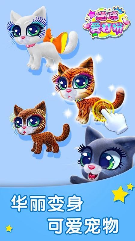 猫咪爱打扮图4