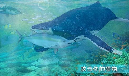 全民养鲸鱼红包版图1