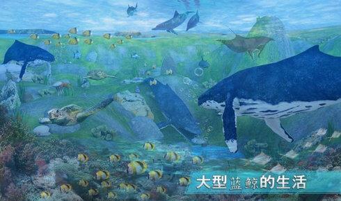 全民养鲸鱼红包版图2