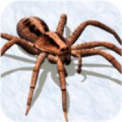 打蜘蛛模拟器