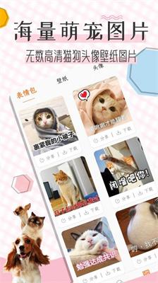 貓語翻譯寶圖2