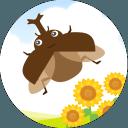 我和甲虫的暑假